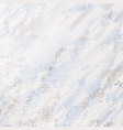 blue gray white marble background vector image