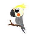 cute cartoon parrot isolated vector image