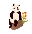 cute sitting panda vector image vector image