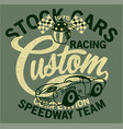 cute stock cars racing team vector image vector image
