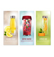 detox drinks banners set vector image vector image