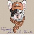 hipster dog French Bulldog vector image