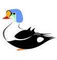 king eider duck vector image vector image
