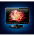 lcd plasma tv with beautiful poppy vector image