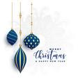 premium decorative christmas balls on white vector image