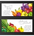 Two horizontal banners with fresh fruits and vector image vector image