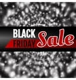 Black Friday Theme vector image vector image