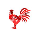 red rooster on white background vector image