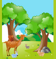 scene with animals in the park vector image vector image
