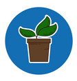 sprout in flowerpot icon vector image vector image