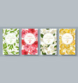 tea flavour banners set vector image