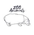 Hand drawn isolated hippopotamus Wild animal vector image