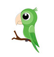 cute cartoon parrot isolated vector image vector image