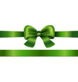 green bow isolated vector image vector image