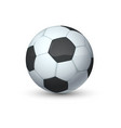 realistic sport ball 3d equipment for football vector image