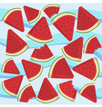 Watermelon Wave Triangle Slice Bite vector image vector image