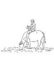 asian farmer man is riding buffalo hand drawn vector image