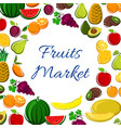 Fruits icons in round shape for market banner