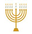 hanukkah jewish candles vector image