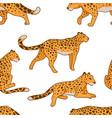leopard print predator in motion wild animal vector image vector image