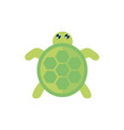 marine life cute turtle cartoon sea fauna animal vector image vector image