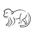outline draw monkey vector image