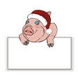 pig in santa hat peeps out from behind white recta vector image vector image