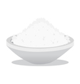 salt and rice vector image vector image