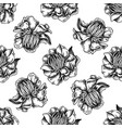 seamless pattern with black and white globeflower vector image vector image