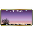 texas license plate vector image vector image