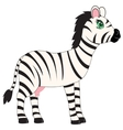 Animal zebra on white background vector image vector image