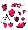 hand draw food vector image