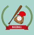baseball sport bats and equipment vector image