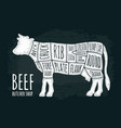 cuts of cow meat beef handwriting lettering vector image