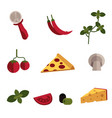 flat pizza ingredients icon set vector image vector image