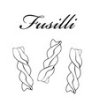 fusilli pasta authentic italian pasta hand drawn vector image vector image