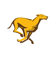 greyhound dog racing running side vector image vector image
