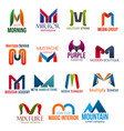 letter m corporate identity business icons vector image