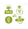 organic raw olive oil creative design vector image vector image