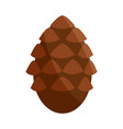 woody fruit conifer tree nature flat icon vector image vector image