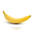 a banana on white background vector image vector image