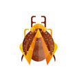 creative icon of beetle with brown and orange wing vector image vector image