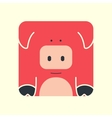 Flat square icon of a cute pig vector image vector image