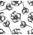 seamless pattern with black and white dog rose vector image vector image