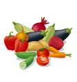 vegetables harvest vector image