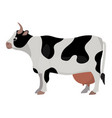 cow farm animal funny cartoon vector image
