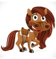 Cute cartoon baby horse vector image vector image