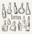 hand drawn bottles doodle wine cognac vector image vector image