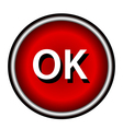 OK icon flat vector image vector image