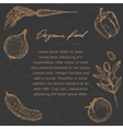 Organic food template vector image vector image